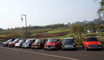 Indonesia Coopret Registry