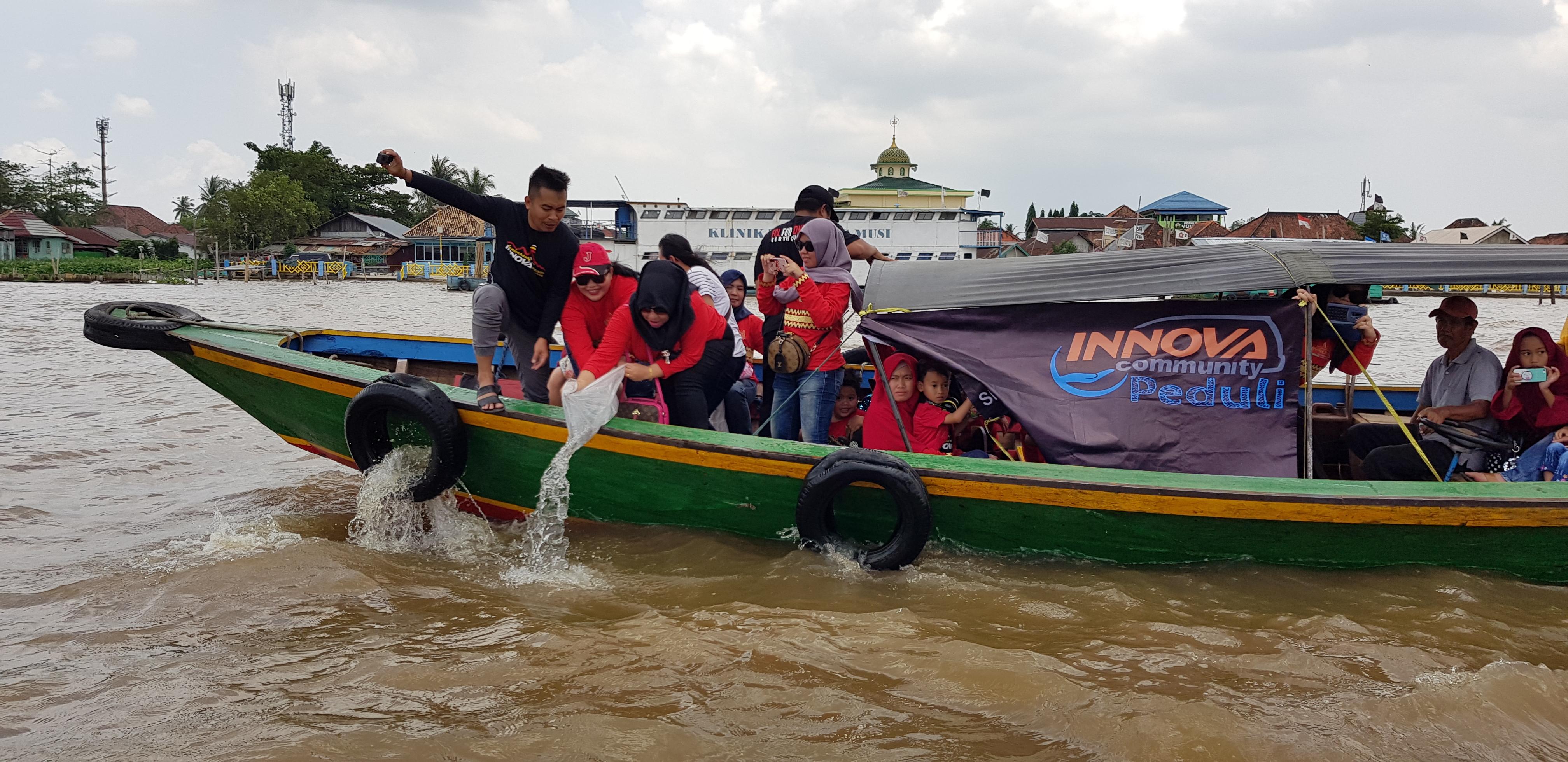 Innova Community menyebar bibit ikan belida di sungai Musi